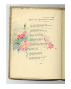 Page 188 with pink primroses.